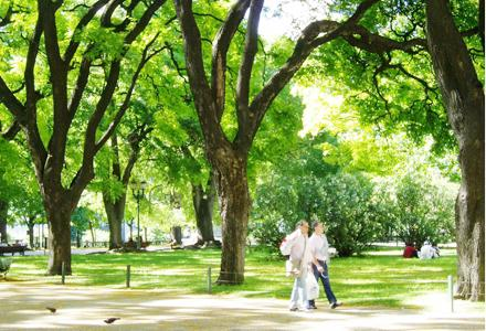 Doyoucity espacios verdes en lisboa - Espacios verdes logrono ...